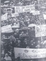 timisoaramiting1990